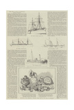 The Royal Naval Exhibition, Steam Navigation Giclee Print