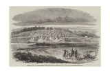 General View of an Encampment at Woolmer Giclee Print