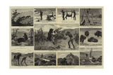 Hunting Sketches in Northern Wyoming Giclee Print