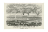 Waterspouts on Lake Constance Giclee Print