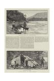 Salmon-Fishing in North America Gicléedruk