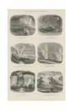Phenomena of Nature Giclee Print