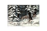 Reindeer, 1860 Wydruk giclee