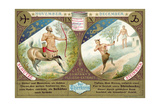 November and December: Sagittarius and Capricorn Giclee Print