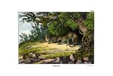 Leopard, 1860 Giclee Print