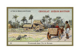 Ox Cart Ride on the Island of Borneo Giclee Print