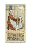 Bayeux Lace Giclee Print