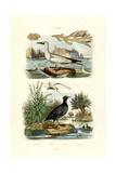 Moss Animal, 1833-39 Giclee Print