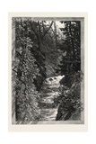 A Trout Pool on the Saugeen, Canada, Nineteenth Century Giclée-Druck