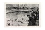 Water Polo Match at the Crown Baths, Kennington Oval, UK, 1890 Giclee Print