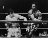 Rocky Fotografía