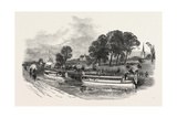 The State Barges on the Bridgewater Canal, UK Giclee Print