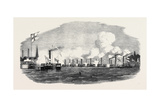 The City Steamboat Company's Vessels Giclee Print