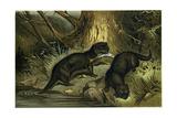 European Otter Giclee Print