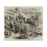 The Isthmus of Suez Maritime Canal, Workmen Loading Dromedaries Giclee Print