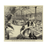 The New Reptile House at the Zoological Gardens Giclee Print