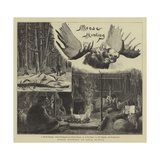 Moose Hunting in Nova Scotia Giclee Print