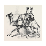 One of Barras' Camel Corps Raised in Rajpootana Giclee Print
