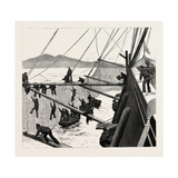 Throwing Out Torpedo-Nets to Protect the Sultan Giclee Print