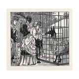 Sketches in the International Exhibition: the Llama 1871 Giclee Print
