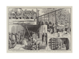 The Preparation of Opium for the Market, Scenes at an Opium Factory Giclee Print
