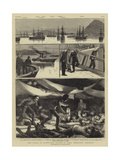 The Crisis in Egypt, the Voyage of HMS Troopship Orontes Wydruk giclee