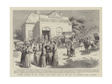 Women's Suffrage in New Zealand Giclee Print