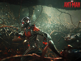 MARVEL: ANT-MAN Prints