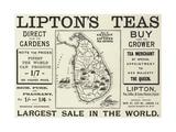 Advertisement, Lipton's Teas Giclee Print