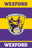 Gaa Wexford Affiches