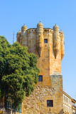 Tower Del Clavero (15Th Century), Salamaca, Spain Photographic Print by  siempreverde22
