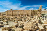 Ruins of the UNESCO World Heritage Town of Palmyra, Syria Photographic Print by  siempreverde22