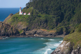 Heceta Head Cove Photographic Print by Jamie Hooper