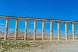 Columns of the Roman Ruins of Palmyra, Syria. UNESCO World Heritage Photographic Print by  siempreverde22