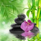 Spa Background - Black Stones and Bamboo on Water Reprodukcja zdjęcia autor Natalia Merzlyakova