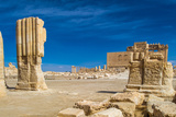 Ruins of Palmyra, Syria Photographic Print by  siempreverde22
