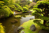 Japanese Tea Garden Photographic Print by Robert Plotz
