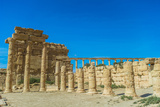 Roman Ruins of Palmyra, Syria. UNESCO World Heritage Photographic Print by  siempreverde22