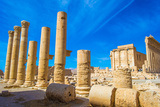 Columns in Palmyra, Syria. UNESCO World Heritage Site Photographic Print by  siempreverde22