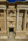 Close View of the Roman Ruins of Palmyra, Syria Photographic Print by  siempreverde22