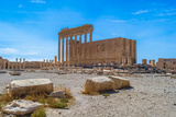 Palmyra, Syria Photographic Print by  siempreverde22