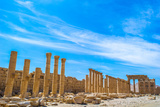 Greco-Roman Ruins of Palmyra, Syria. UNESCO World Heritage Photographic Print by  siempreverde22