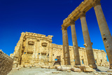 Ruins of Palmyra, Syria. UNESCO World Heritage Site Photographic Print by  siempreverde22