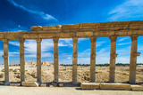 Columns of the Roman Ruins of Palmyra, Syria Photographic Print by  siempreverde22