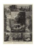 The Jesmond Dene Public Park, Newcastle-On-Tyne Giclee Print