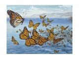 Migration of Monarch Butterflies (Danaus Plexippus), Nymphalidae Giclee Print
