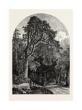 The Deer Garden, Stockholm, Sweden, 19th Century Giclee Print