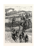 Following the Hounds by Train; New Zealand Giclee Print