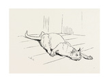 The Cat That Ate the Rat, 19th Century Giclee Print
