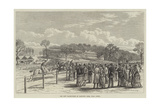 The New Racecourse at Sandown Park, Near Esher Giclee Print
